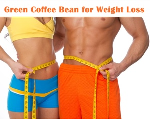 Green Coffee Bean Slim Suppliers